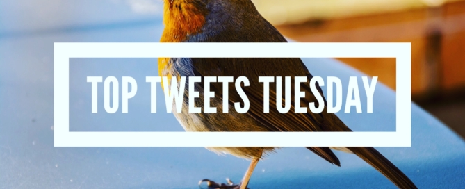 Top Tweets Tuesday