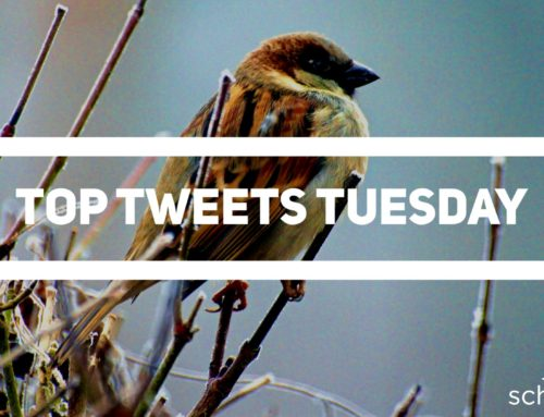 Top Tweets Tuesday – Issue #10