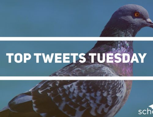 Top Tweets Tuesday – Issue #11