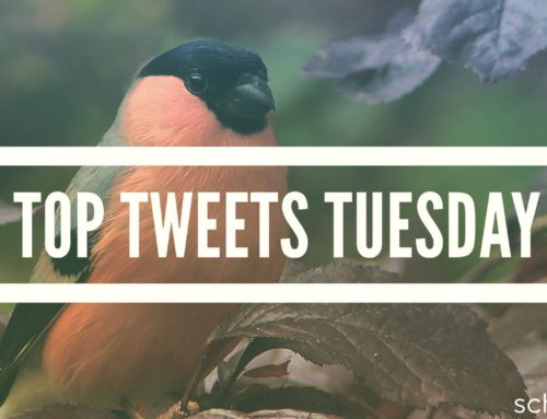 Top Tweets Tuesday – Issue #13