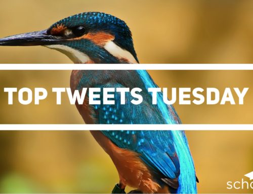 Top Tweets Tuesday – Issue #14