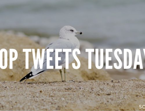 Top Tweets Tuesday – Issue #15